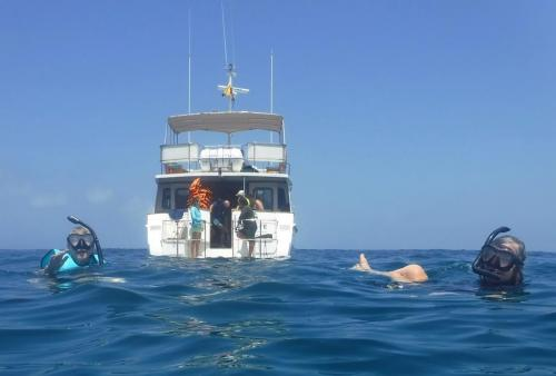 Snorkeling off North Seymour Island