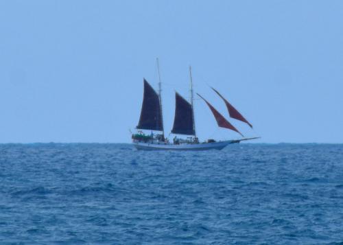 Sailing offshore Florida