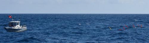 Divers offshore