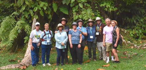 The Amazon team