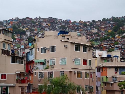 Rocinha flavela