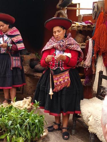 Creating wool from baby llama
