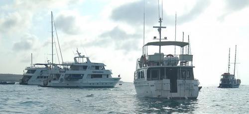 In Puerto Ayora harbor