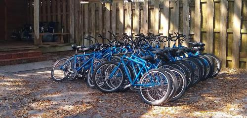 Padlocked rental bycycles